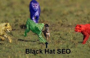 Black Hat SEO deer running from Google leopards