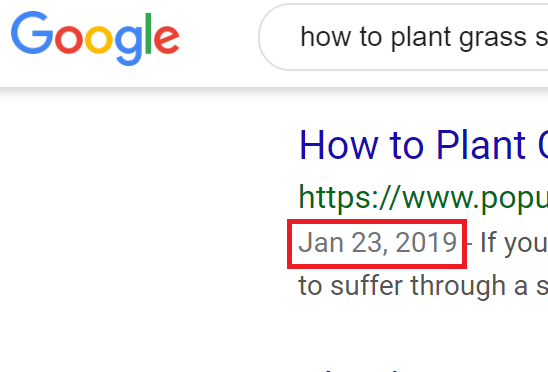Google Search Publish Date – How to Show the Date In the SERP